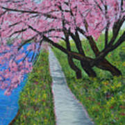 Cherry Trees- Pink Blossoms- Landscape Painting Art Print