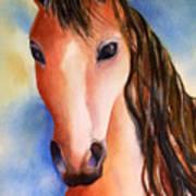 Chestnut Horse Art Print
