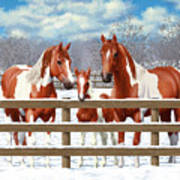 Chestnut Paint Horses In Snow Art Print by Crista Forest
