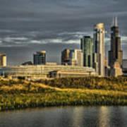 Chicago Skyline And Nature Preserve At Sunrise Art Print