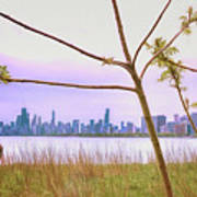 Chicago Skyline - The View From Montrose Point Art Print