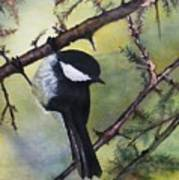 Chickadee Autumn Art Print