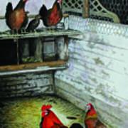 Chicken Coop Art Print