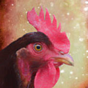 Chicken Portrait - Painting Art Print