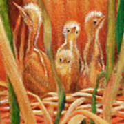 Chicks In The Reeds Art Print