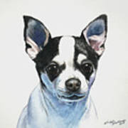 Chihuahua Black Spots With White Art Print