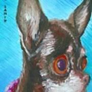 Chili Chihuahua Art Print