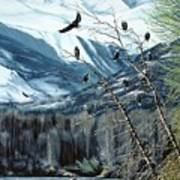 Chilkat River Eagles Art Print