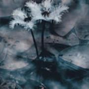 Chilling Blue Lagoon Details Art Print