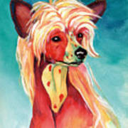 Chinese Crested Sunset Art Print