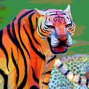 Chinese Tiger 2 Art Print