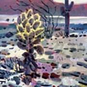 Cholla Saguargo And Ocotillo Art Print