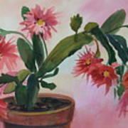 Christmas Cactus Art Print