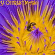 Christmas Card 2 Art Print