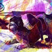 Christmas Dog Santa Hat Slide  Art Print