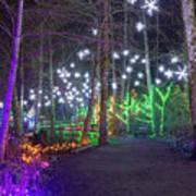 Christmas Lights Decoration Along Lafarge Lake Path Art Print