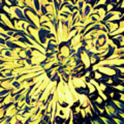 Chrysanthemum Pop Art Print