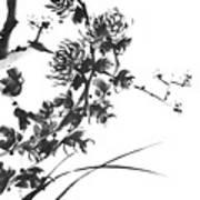 Chrysanthemum2 Art Print