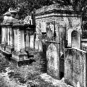 Churchyard Of Old Charleston Art Print