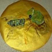 Cicada On Gold Art Print