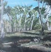 Cimmeron Grasslands Art Print