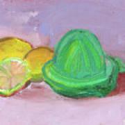 Citrus Squeezer Art Print