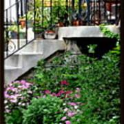 City Garden Art Print