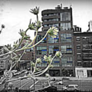 City Sway Art Print