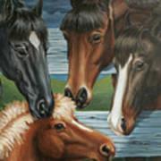 Claras Pony Art Print