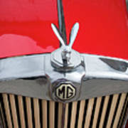 1936 Mg Ta Radiator And Mascot Art Print