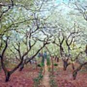 Claude Monet Orchard In Bloom Art Print