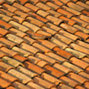 Clay Roof Tiles Art Print by David Buffington