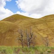 Clear Sky At Painted Hills Art Print