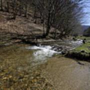Clear water Shteaza near Rasinari Art Print