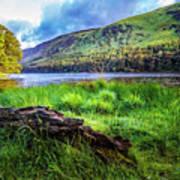 Clear Waters Of Glendalough Art Print