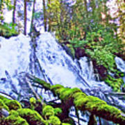 Clearwater Falls, Highway 138, Umpqua National Forest, Oregon Art Print