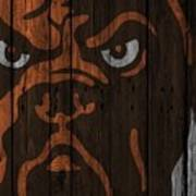 Cleveland Browns Wood Fence Art Print