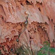 Climbing Mooney Art Print