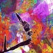 Close Up Dragonfly Insect Macro  Art Print