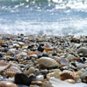 Close Up From A Beach Art Print by Romeo Reidl