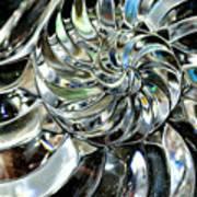 Close-up Of Glass Chambered Nautilus Art Print