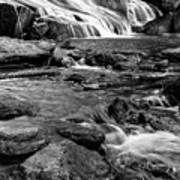 Close Up Of Reedy Falls In South Carolina B W Art Print