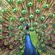 Closeup Portrait Of An Indian Peacock Displaying Its Plumage Art Print