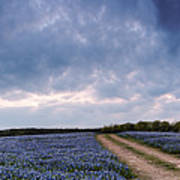 Cloud Vortex Over Bluebonnets At Muleshoe Bend Recreation Area - Spicewood Texas Hill Country Art Print