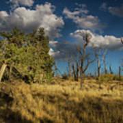 Clouds Over Mesa Verde Art Print