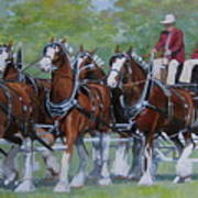 Clydesdale Hitch Art Print by Anda Kett