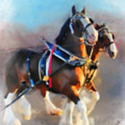 Clydesdales Art Print