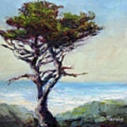 Coast Cypress Art Print
