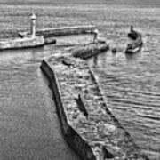 Coast - Whitby Harbour Art Print