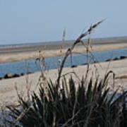 Coastal Calm Art Print
